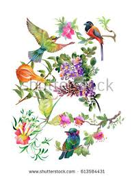Flower And Bird - bird painting stock images royalty free images vectors