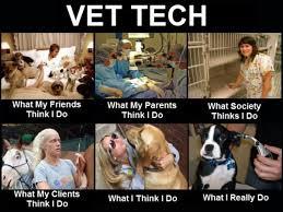 Dog At Vet Meme - vet funny pictures