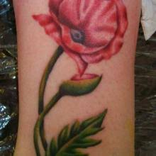 big tattoo planet poppy lest we forget big tattoo planet