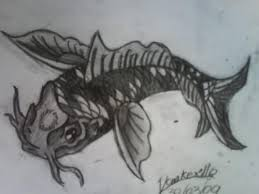 the 25 best fish drawing images ideas on pinterest fish sketch