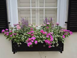 decoration garden boxes flowering plants self watering window