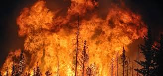 California Wildfire Ranking by In The West Which State Faces The Biggest Wildfire Risk