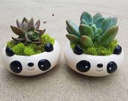 animal planter animal planter etsy