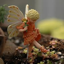 39 best garden flower fairies images on fairies
