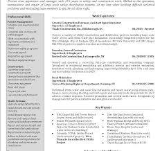 Security Supervisor Resume Download Supervisor Resume Haadyaooverbayresort Com