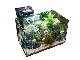 membuat filter aquarium kecil filter aquarium aquarium filter diy system wecompany me