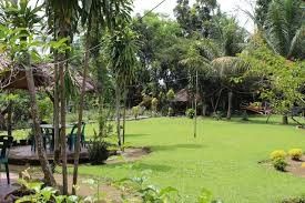 batu mandi guest house bukit lawang indonesia booking com