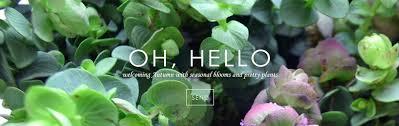 flower delivery dallas dallas florist flower delivery by dr delphinium designs events