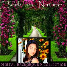 digital backdrops digital backgrounds sandwhich layered psd props nature photography