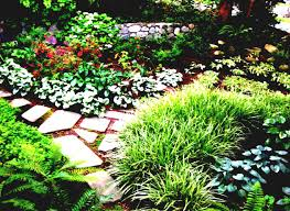 Backyard Landscaping Ideas For Privacy by Backyard Landscaping Ideas Garden For Small Areas Perfect