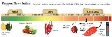 twin cities u0026 spicy food lovers minneapolis mn meetup