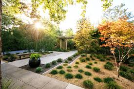 top 10 trees for small spaces sunset magazine