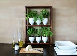 kitchen herb garden ideas kitchen herb garden kitchen design
