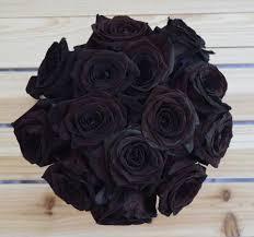 black roses black magic vivaroses