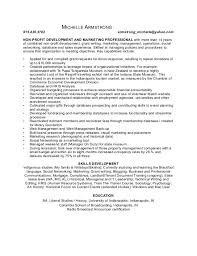 Non Profit Resume Professional Marketing Resume Make Resume Free