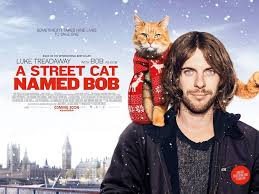 street cat named bob got me through drug addiction and