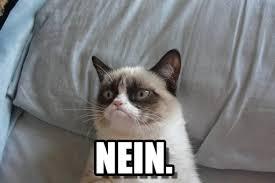 Nein Meme - nein grumpy cat bed meme on memegen