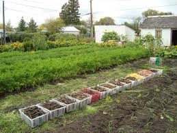 get started with spin farming spin farming and organic farming