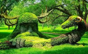 World Botanical Gardens Acharya Jagadish Chandra Bose Indian Botanic Garden Kolkata