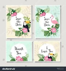 vector tropical cards set stock vector 565185934