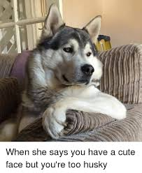 Too Cute Meme Face - when she says you have a cute face but you re too husky cute