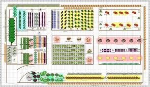 Design A Vegetable Garden Layout Fall Square Foot Vegetable Garden Planner Square Foot Vegetable