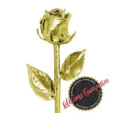 gold dipped gold dipped roses real roses made to last a lifetime steven