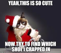 Cute Christmas Meme - grumpy cat christmas hd memes imgflip