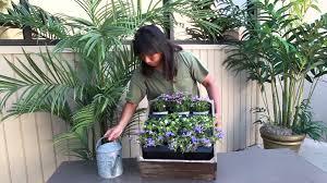 living wall planter youtube