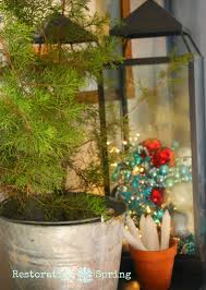 christmas tree container christmas lights decoration