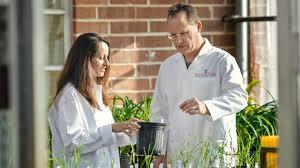 Career Uga Edu Plant Pathology