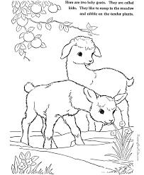farm animal coloring pages goats print color 002