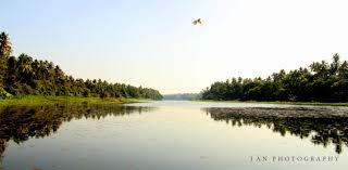tranquility file behold the tranquility chalakudy river kerala jpg