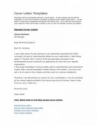 Short Cover Letter Examples For Resume by Resume Technical Writer Resume Sample What To Write In Resume