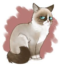 19 Awesome Grumpy Cat Christmas - grumpy cat by adlynh on deviantart