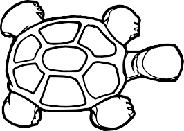 tortoise turtle top view coloring page wecoloringpage
