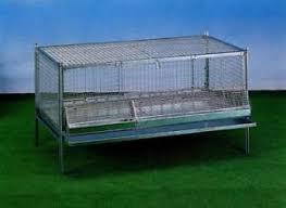 gabbia per pulcini gabbie per galline tutte le offerte cascare a fagiolo