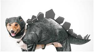 Extra Large Dog Costumes Halloween 5000 Halloween Costumes Kids U0026 Adults Oriental Trading
