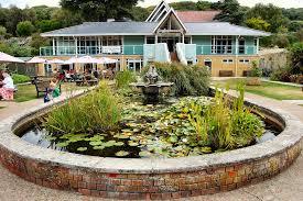 Ventnor Botanic Gardens Ventnor Botanical Gardens Located On The Isle Of Wight Uk Flickr