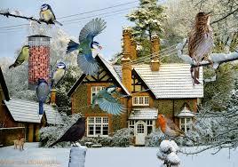 warren house birds jigsaw photo wp01207