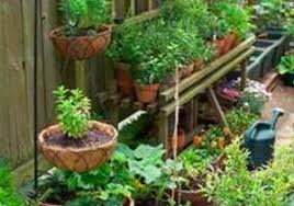 patio gardening ideas fresh 13 container gardening ideas potted
