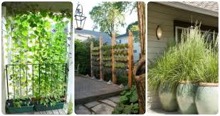 Create Privacy In Backyard Create Privacy In Your Yard On Some Of These 9 Attractive Ways