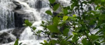 Wisconsin waterfalls images Northern wisconsin waterfalls northwoods trail activities jpg