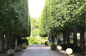 Botanic Garden Glencoe Walkway To Garden Picture Of Chicago Botanic Garden