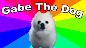 Doge Meme Meaning - what is gabe the dog the history origin of bork remixes and
