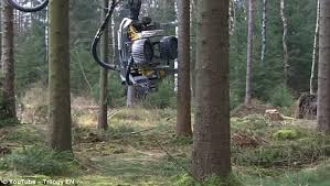 of robotic arm that cuts up a tree trunk in seconds