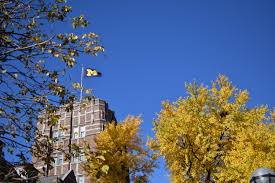 Flags At Half Mast Michigan What The University U0027s Next 200 Years Could Bring The Michigan Daily