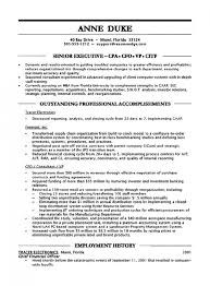 best cfo resume format vp resume samples resume cv cover letter