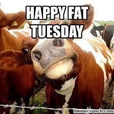 Fat Tuesday Meme - fancy fat tuesday meme fat tuesday kayak wallpaper
