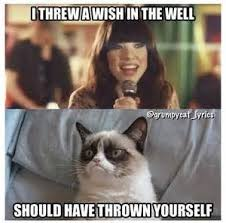 This Girl Is On Fire Meme - this girl is on fire good let her burn grumpy cat pinterest